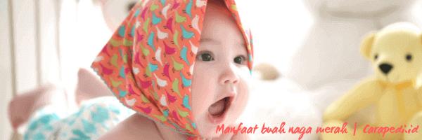 manfaat & cara mengolah buah naga merah untuk bayi